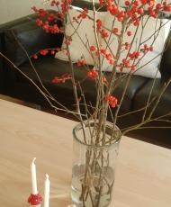 røde bærgrene