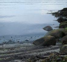 Tirsbæk strand