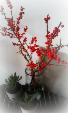 røde bær