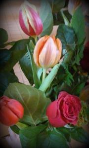 tulipaner med een rose