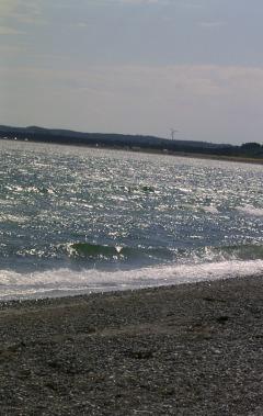 strand med roen